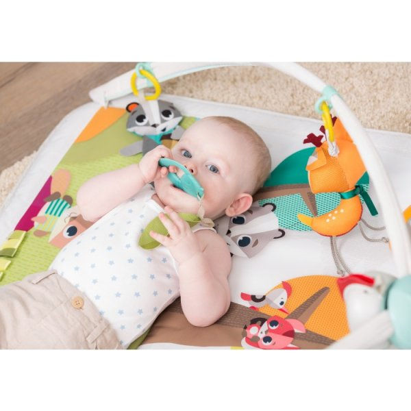 eb8f4864f1a9c6 Tiny Love Play Mat Deluxe Gymini Into the Forest Online Offer at ...
